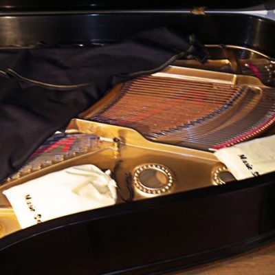 music-sorb-in-grand-piano