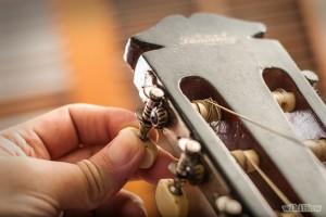 Classical Guitar Pegs